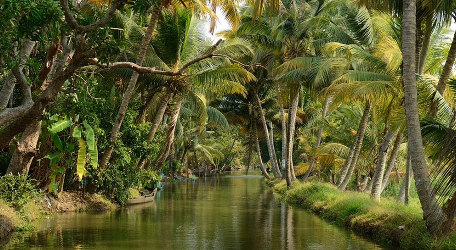 Kerala Blackwater Hausboot Reise